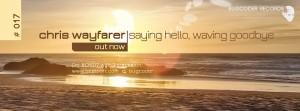 Chris Wayfarer - Waving Goodbye, Saying Hello (Bugcoder Records, BCR017)